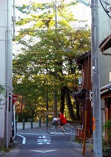 041011_rojikouen.jpg