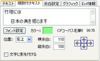 20090112_multitext