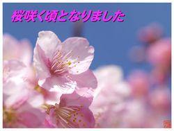 20090308_kagetsuki