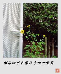 Square_060819_03